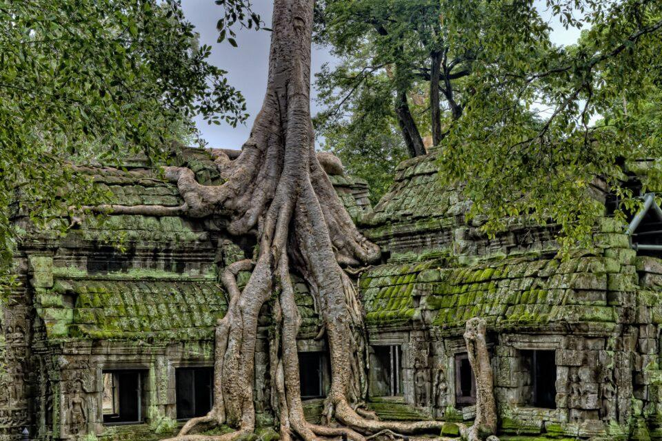 where to go in Cambodia