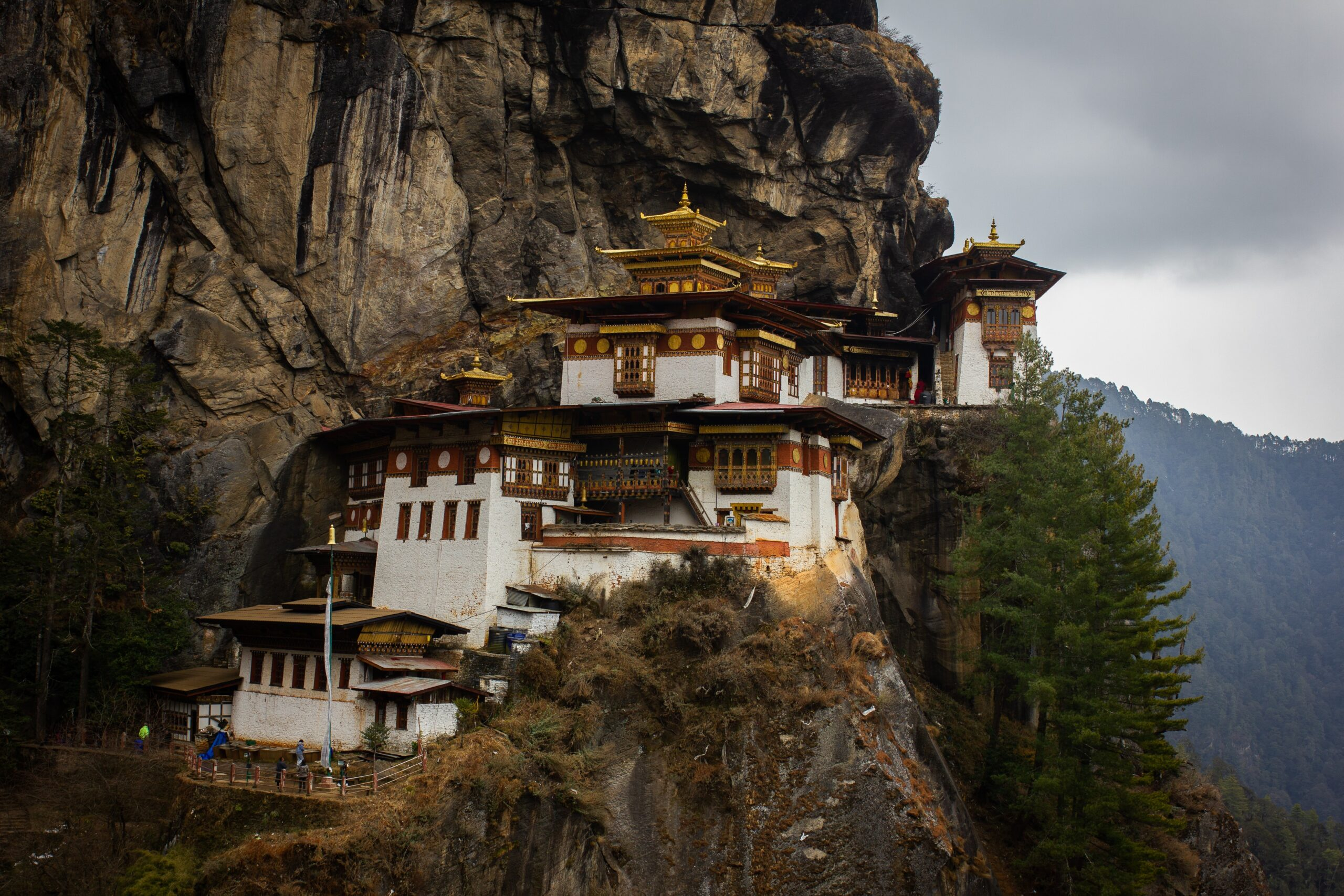 best things to do in Thimphu